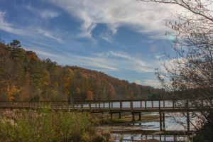 Cosby Lake_00018_131118