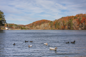 Cosby Lake_00032_131118